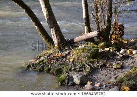 Eroded sand riverbank Stock photo © 5xinc