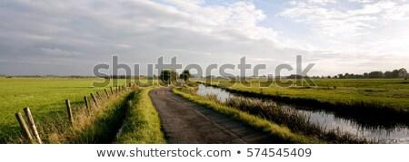 小 · 川 · オランダ語 · 自然 · 緑 · 風景 - ストックフォト © compuinfoto