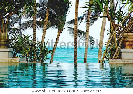 piscine modernes luxe h tel tha lande le photo stock volodymyr melnyk master1305. Black Bedroom Furniture Sets. Home Design Ideas
