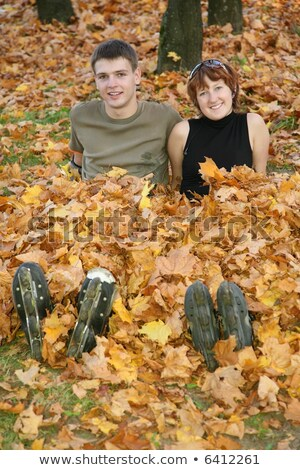 young roller couple sit on yellow leaves Stock photo © Paha_L