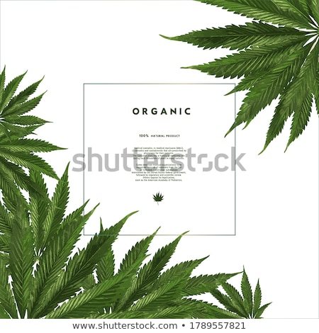 cannabis leaf symbol textured background stamps Stock photo © Zuzuan