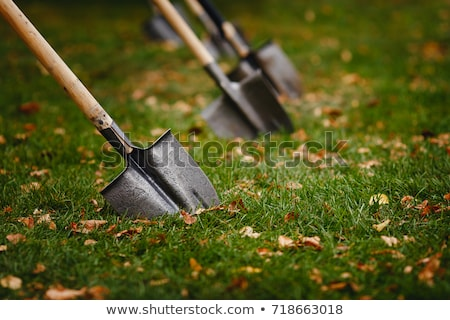 digging a hole with a spade Stock photo © Twinkieartcat