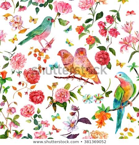 bloem · abstract · gekleurd · bloemblaadjes · grunge · steeg - stockfoto © orensila
