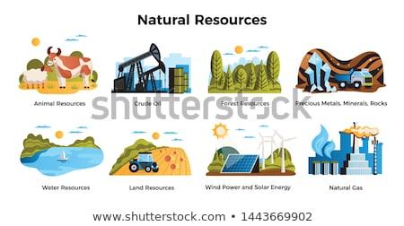 Terra água recursos ilustração céu grama Foto stock © bluering