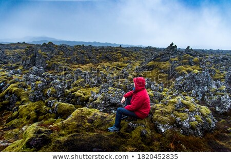 Man is a traveler on moss on a lava field in Iceland Stock photo © Kotenko