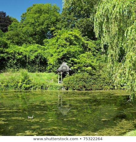 tullynally castle gardens county westmeath ireland stock photo © phbcz