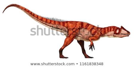 Húsevő dinoszaurusz izolált fehér állat szörny Stock fotó © orensila