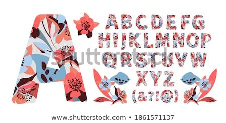 Dedo ortografia alfabeto americano linguagem gestual Foto stock © Givaga