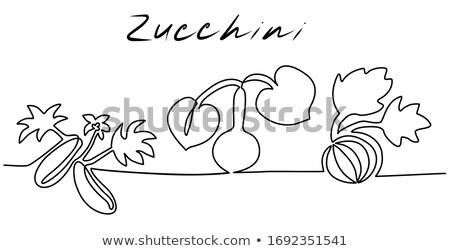 különböző · fajok · növények · zöld · fehér · levél - stock fotó © bluering