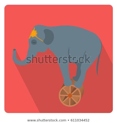 Circo elefante roda ícone estilo longo Foto stock © lucia_fox