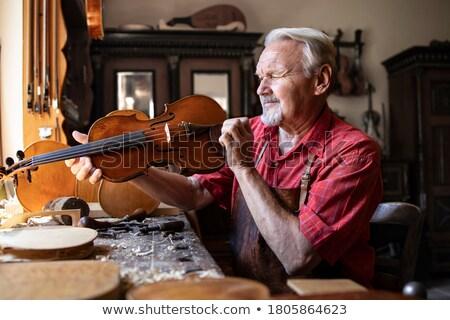 Stockfoto: Viool · instrumentaal · illustratie · muziek · grappig