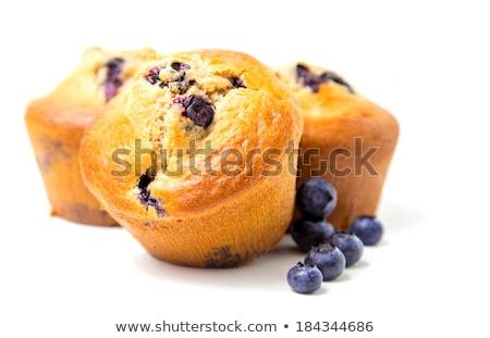 乳房 · チョコレート · ブルーベリー · 白 · デザート · 甘い - ストックフォト © dariazu