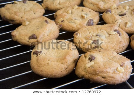 Walnut cookies on a tray Stock photo © tekso