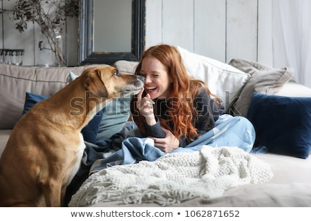 Young woman on couch with dog Stock photo © IS2