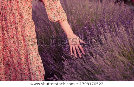 Young woman touching flowers Stock photo © deandrobot