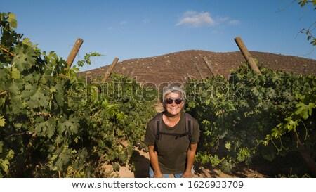 Kadın bakıyor üzüm asma aile gıda Stok fotoğraf © IS2