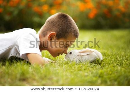 少年 演奏 ウサギ 庭園 草 子 ストックフォト © IS2