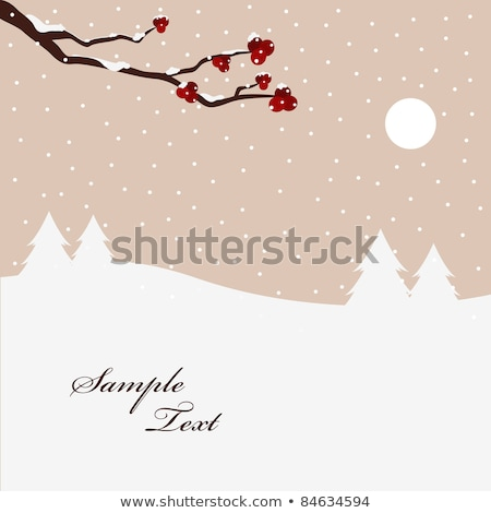 Red berries and branches of mountain ash on background of winter sky. Snowfall winter sky landscape Stock photo © orensila