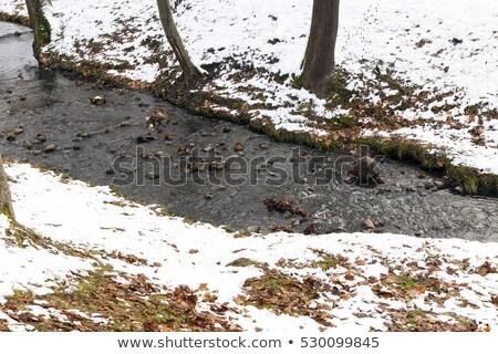 Ghiaccio piccolo stream banca inverno Foto d'archivio © Mps197