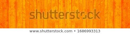 oude · grunge · hout · paneel · geschilderd · oranje - stockfoto © daboost