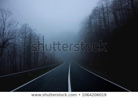 Straße führend Nebel Transport Geheimnis Freien Stock foto © IS2