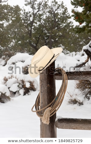Cowboyhoed opknoping houten hek Stockfoto © IS2