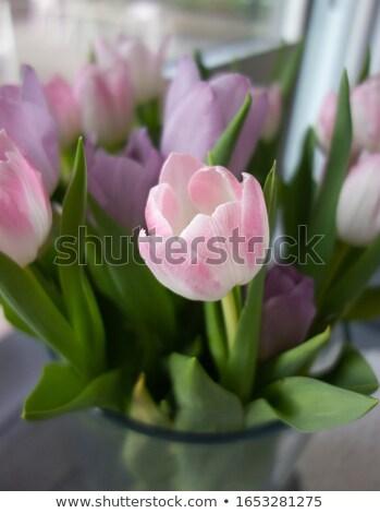 Virágcsokor rózsaszín tulipánok váza fehér tojások Stock fotó © Melnyk