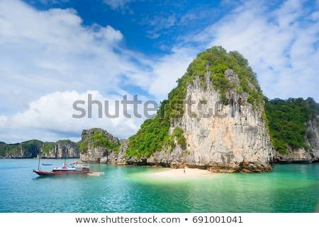 Вьетнам · лодках · пейзаж · азиатских · тропические · Азии - Сток-фото © romitasromala