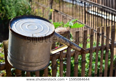Vintage tin bucket on the fence of a vegetable garden Stock photo © manfredxy