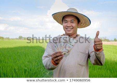 farmer worker old man money Stock photo © toyotoyo