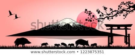 日没 · 家族 · シンボル · 夏 · ビーチ · 幸せ - ストックフォト © liolle