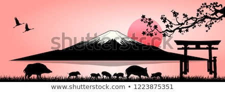 Família Monte Fuji silhueta fuji montanha Foto stock © liolle