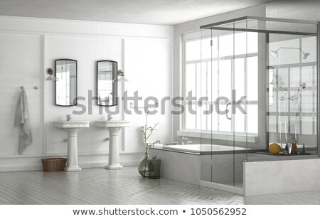 Luxury bathroom with glass shower and dual vanity. Stock photo © iriana88w