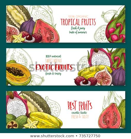 Carambola or Starfruit Exotic Fruit Vector Poster Stock photo © robuart