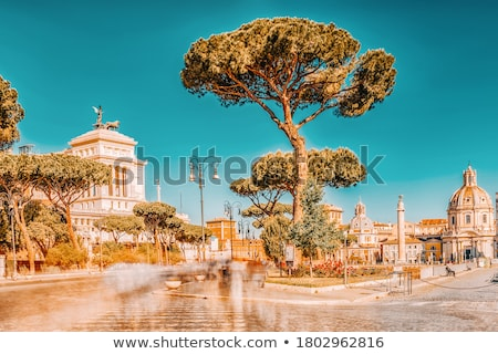 chiesa dei santi luca e martina in rome italy stock photo © boggy