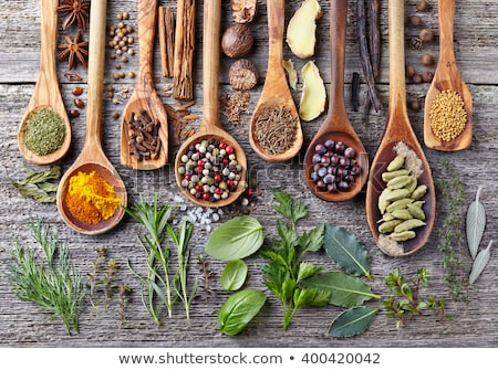 Herbs and spices. Basil, salt and pepper Stock photo © furmanphoto