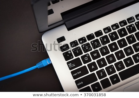 Laptops wifi Internet Wireless Link Vektor Stock foto © robuart