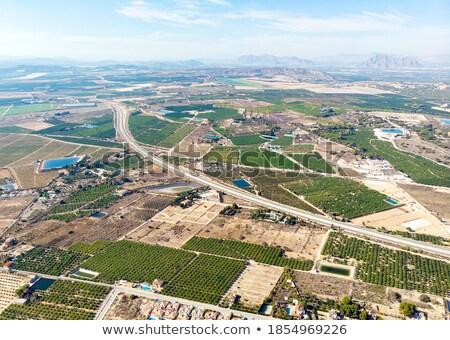 Paisaje agrícola cosecha trigo Foto stock © artjazz