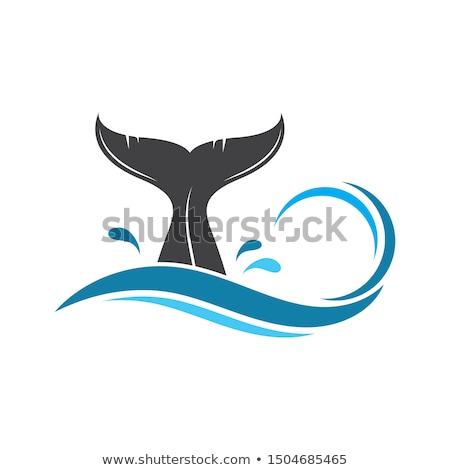 Iceland nature vector symbol big blue whale Stok fotoğraf © Giraffarte