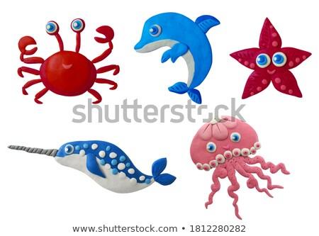 Nyár karakter piros rák meduza tengeri csillag Stock fotó © robuart