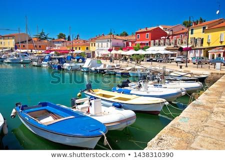 Novigrad Istarski historic waterfront and colorful harbor view Stock photo © xbrchx