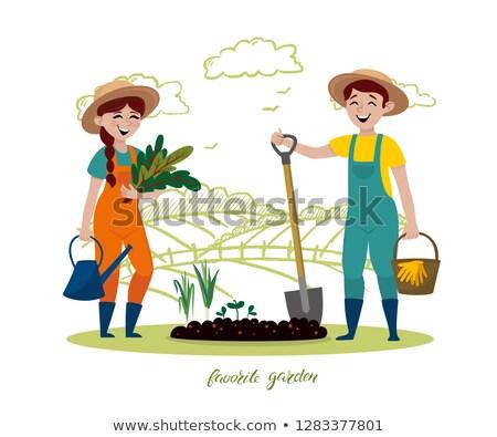 農家 農業の 活動 セット ベクトル 男性 ストックフォト © robuart