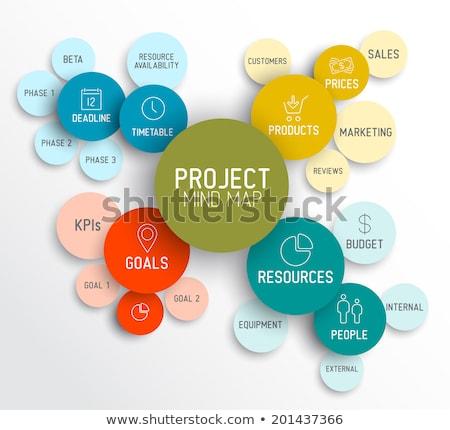 Project management mind map scheme / diagram Stock photo © orson