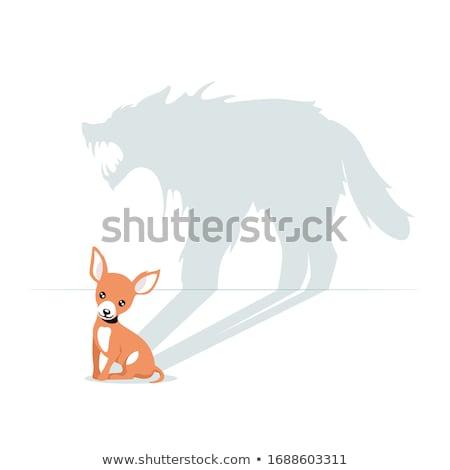 Louco pequeno lobo desenho animado ilustração olhando Foto stock © cthoman