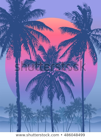 Palm Coastline Tropical Tree Color Vector Stock photo © pikepicture