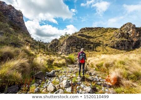 Caminante montanas caminando secar alto Foto stock © lovleah