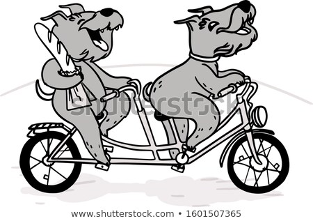 Two cheerful dogs on a tandem bike ride with a baguette. Stock photo © vasilixa