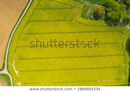 Campo estrada de terra agrícola terra campos Foto stock © artjazz