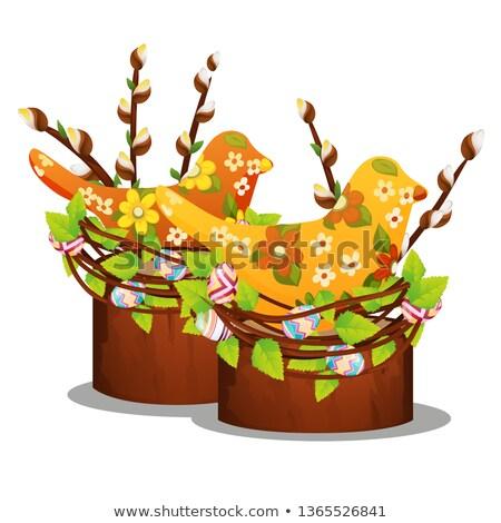 Brindille floraison saule isolé blanche vecteur Photo stock © Lady-Luck
