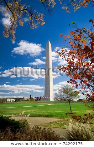 washington monument autumn framed leaves blue sky stock photo © qingwa